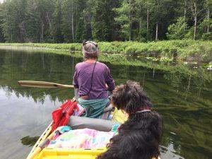 Main Lakes Chain Canoe Trip -Quadra Island