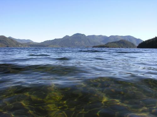 Kennedy Lake T217
