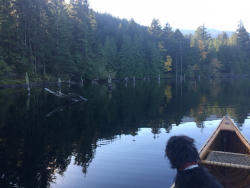 Westwood Lake